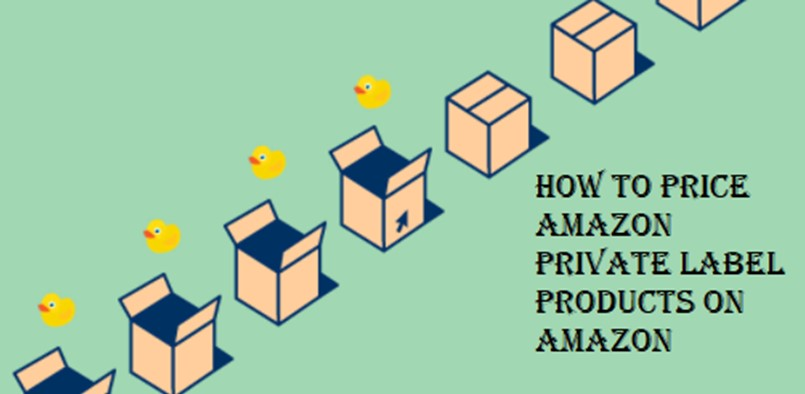 how-to-price-amazon-private-label-products-on-amazon