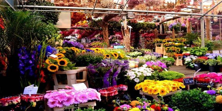 Where-to-Find-Artificial-Flower-Wholesale