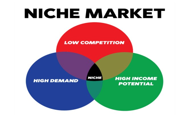 How to Start Product Niche Business
