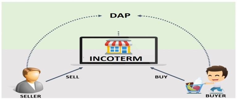What are the Responsibilities of Concerned Parties in DAP Shipping Term